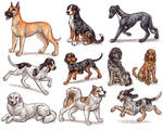 G - Dog Breeds -page 3-
