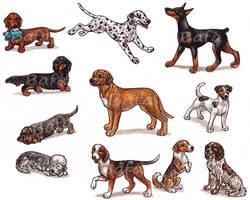 D - Dog Breeds -page 1- by Bafa