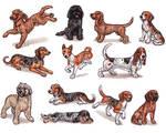 B - Dog Breeds -page 1-