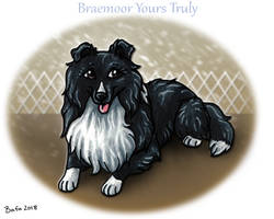 Braemoor Yours Truly - CD Title
