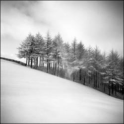 snowland by nayein