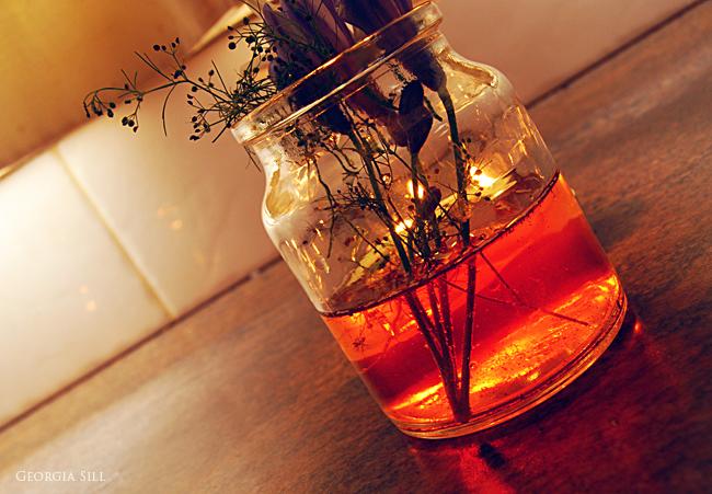 Elixir V by GeorgiaSill