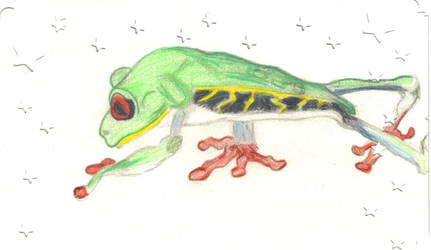 Froggie by ChovexaniArt
