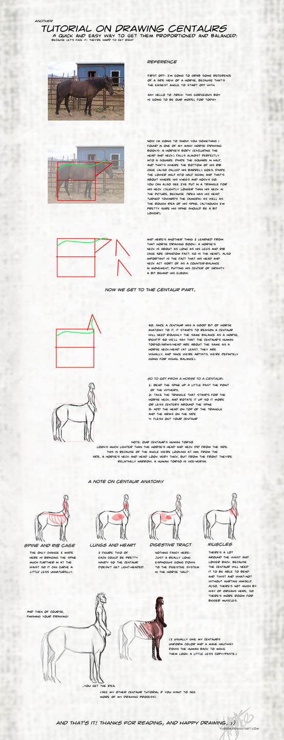 Centaur Proportion Tutorial by Yubria