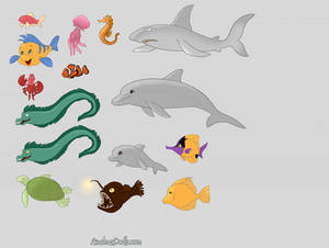 Assortment of Sea Creatures
