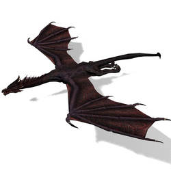 3D Black Dragon by DrullDestroyer