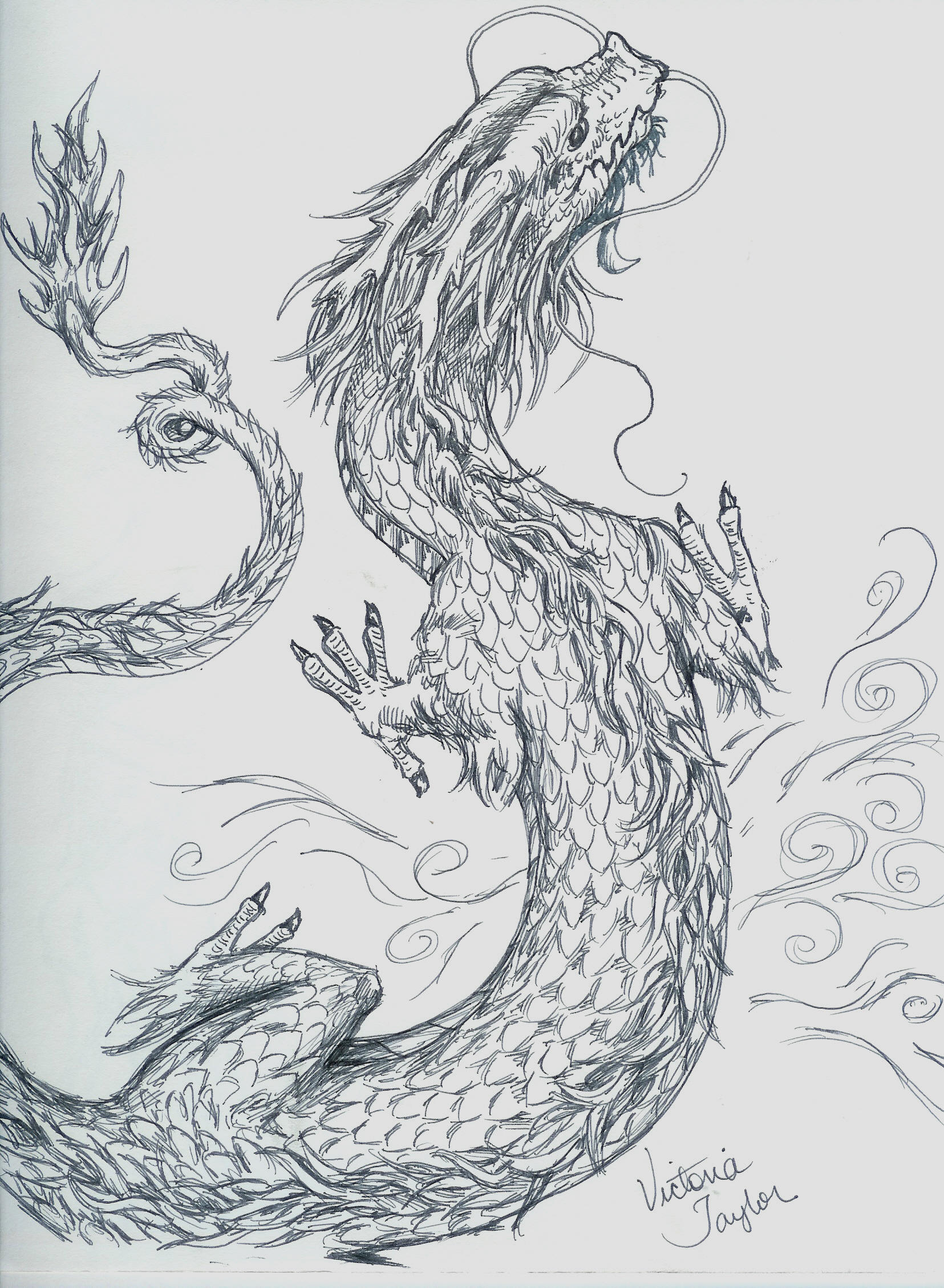 Chinese Dragon sketch by DragonSpark on deviantART Easy Chinese Dragon Sketch