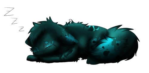 Ilo lupi - Petit d'Aout