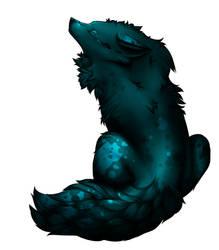 Ilo lupi - Adulte d'Aout