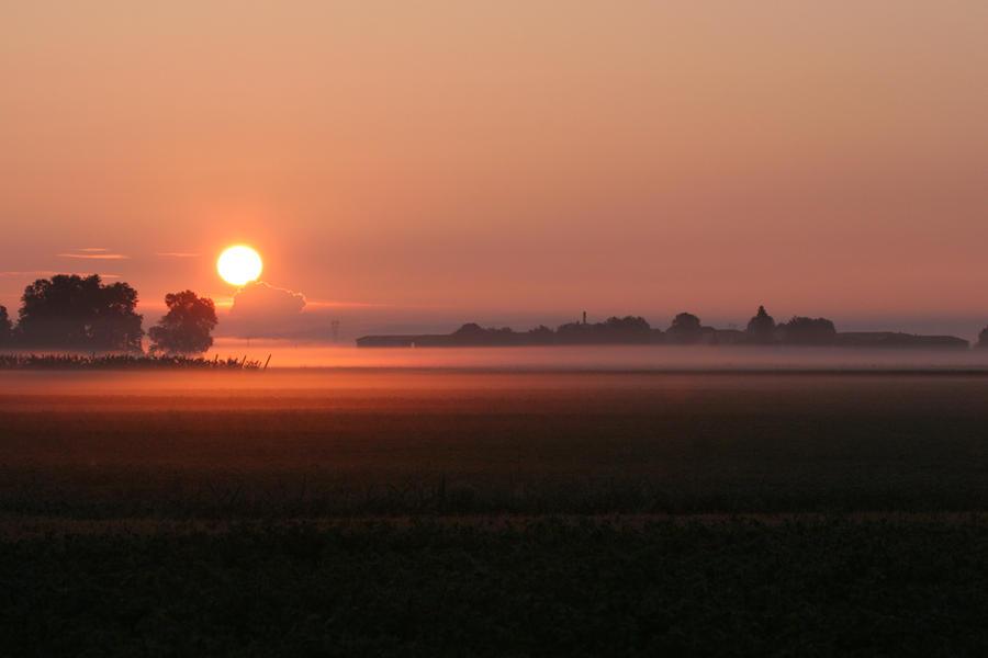 misty dawn by EyeOfBoa