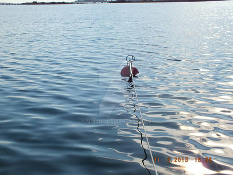 Hang onto the buoy