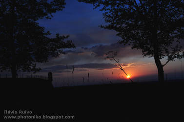 Romantic Sun_2 by FlavioRuivo