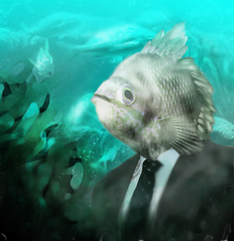 busyness fish by Hamesu