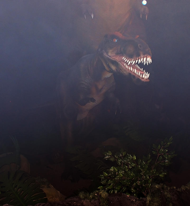 Stock Dinosaurs 4 by Nataly1st