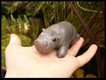 Marcus the Hippo