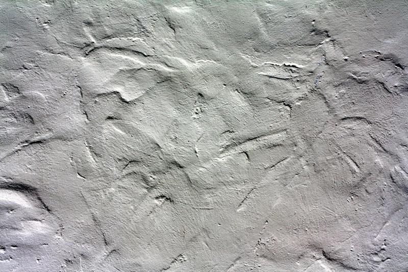 stucco by beckas
