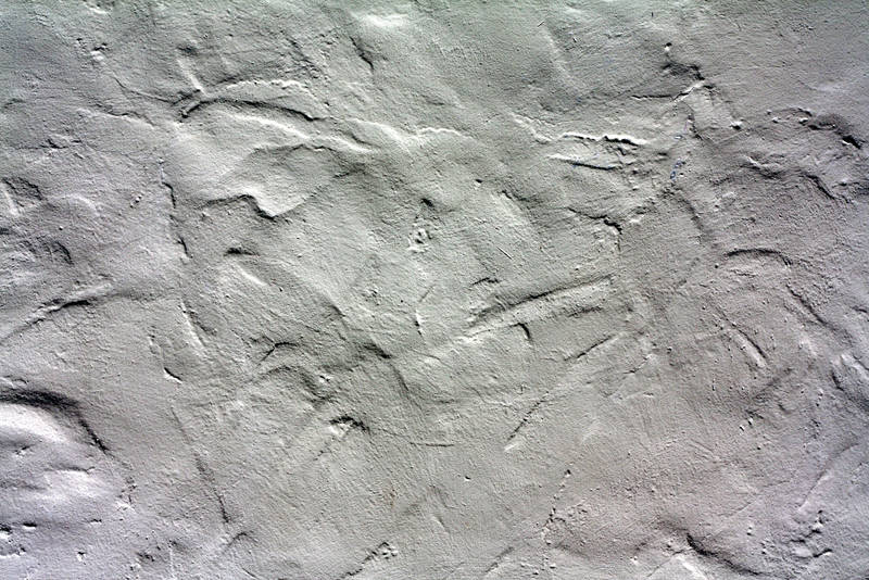 stucco by beckas