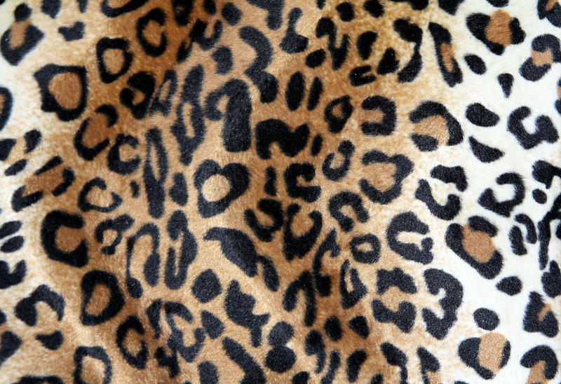 Leopard fabric texture by beckas