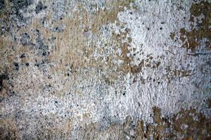 grunge wall texture by beckas