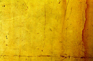 yellow grunge texture by beckas
