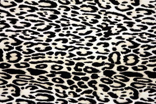 Animal Print Texture
