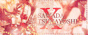 sawada tsunayoshi: X.