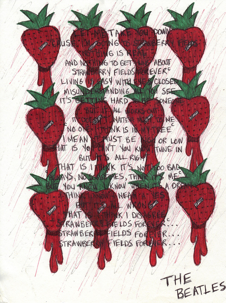 an essay abot strawberry Dna strawberry extraction lap dna strawberry extraction hypothesis strawberries have dna that sign up to view the whole essay and.