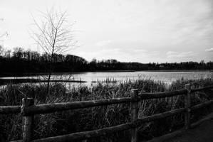 Serene Lagoon by cygon