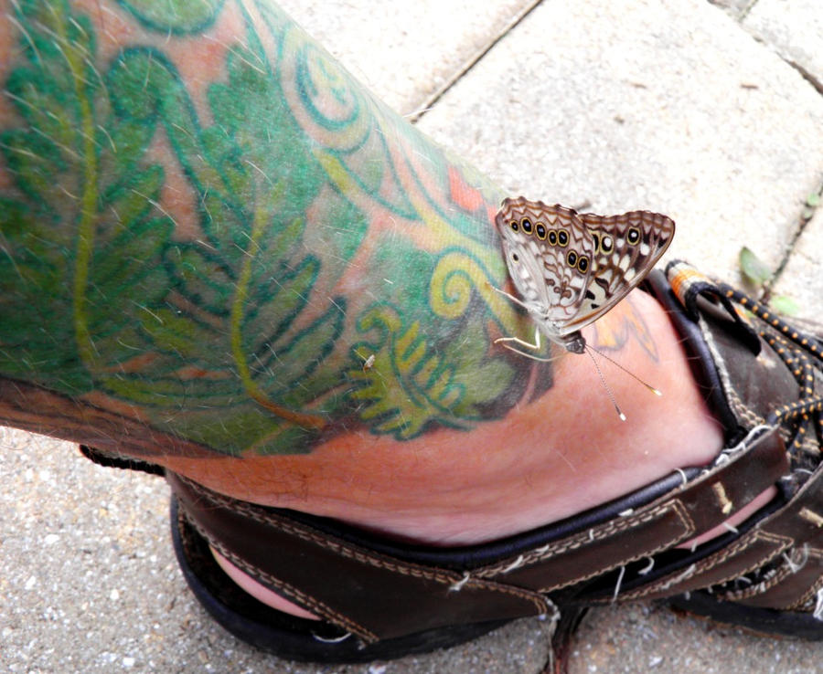 Dogs Mating With Humans For Real Dragon Tattoos Women On Side Tattoo ...