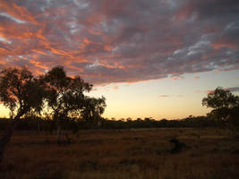 Evening sky by CAStock