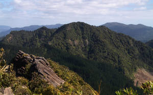 New Zealand 05 by CAStock