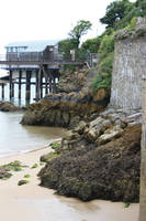 Low tide by CAStock