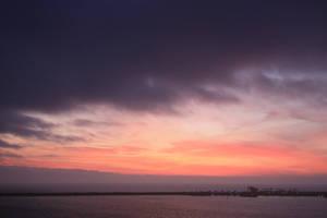 Purple morning by CAStock