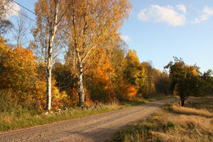 Autumn serenity by CAStock