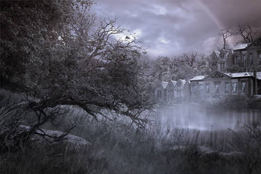 Ghostly Meadow Silver by CAStock