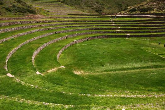 Inca terrace - Moray 1