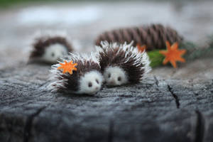 Hedgehogs by Irentoys