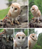Owl by Irentoys
