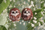 Owlets and Spring