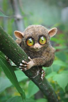 The tarsier [stuffed toy]