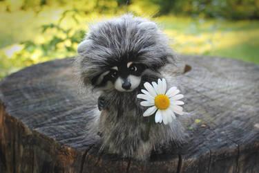 Raccoon Romka [stuffed toy] by Irentoys