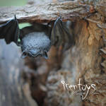 The bat [stuffed toy]