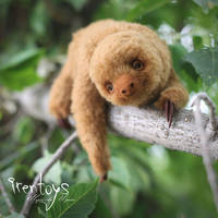 Two-toed sloth [stuffed toy]