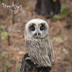 Owl Plyusha [stuffed toy] by Irentoys