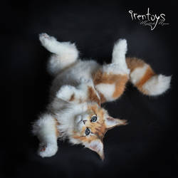 The Lazy kitty [stuffed toy]