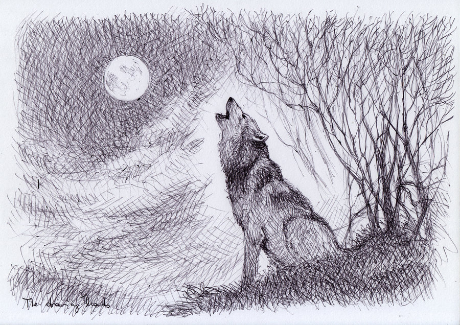 Howling Wolf By Thedrawinghands-d58rqlx by pianosophie01 ...