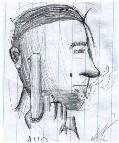 Avo Draft by toXicvArn90