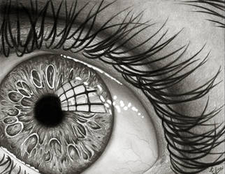 THE EYE by Efra270