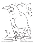 Perched Raven Coloring Sheet