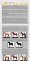 Guide to Horse Color Genetics